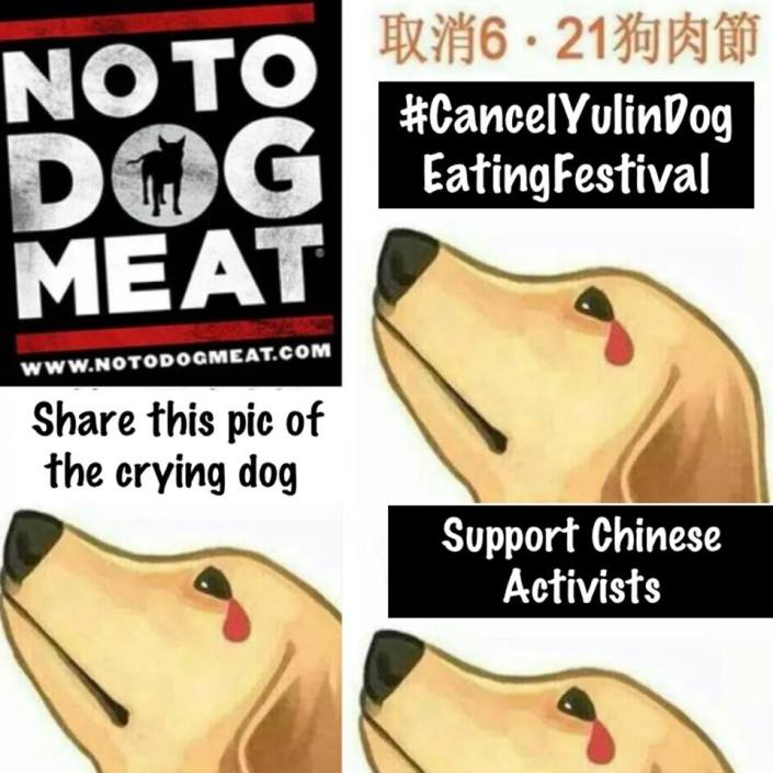 Yulin Dog Meat Eating Festival, China 21st June