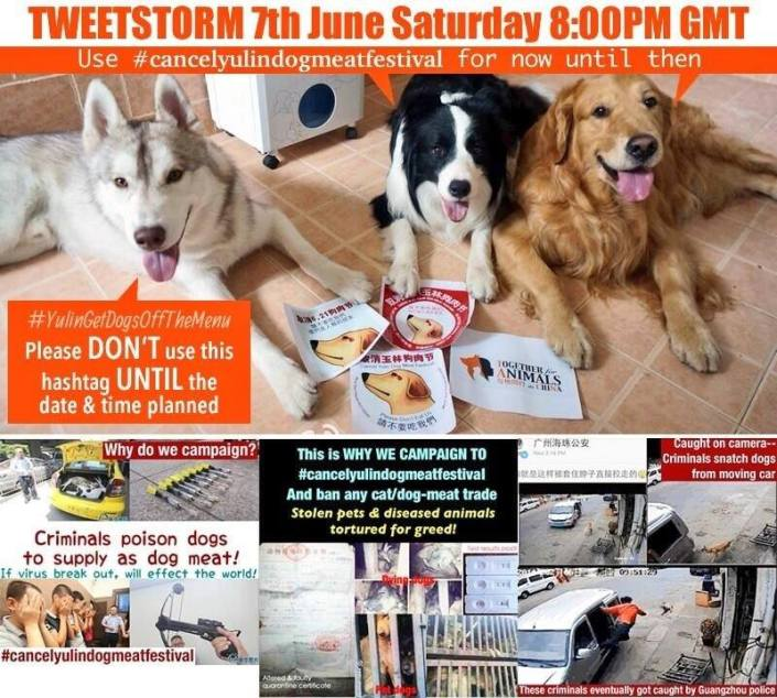 Tweetstorm this Saturday 7th June - Cancel Yulin