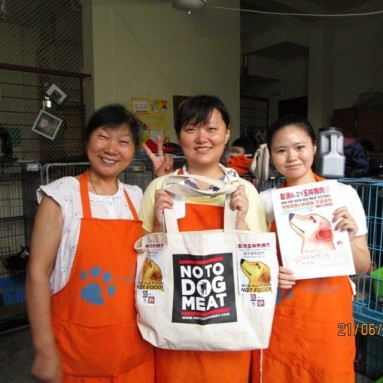 Sophie at Paw Pals Animal Rescue China Today for Notodogmeat, TACN 上海老碼頭
