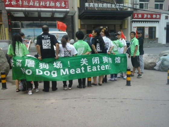 ChinaNtdm4