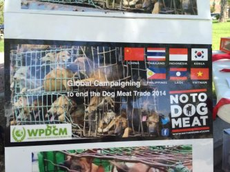 NOTODOGMEAT ASIAN COUNTRY NAMES