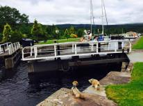 Thursday Curlochy Loch