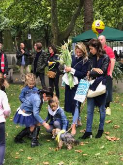 Dog Show Fun Day NoToDogMeat Adoptdontshop 02