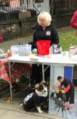Dog Show Fun Day NoToDogMeat Adoptdontshop 07